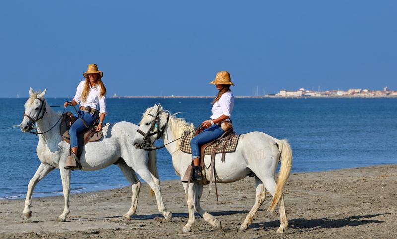 240dba5ddbf Faire du cheval en Camargue